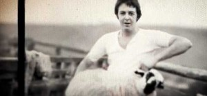 Ram de Paul McCartney: Un gusto re-editado thumbnail